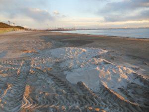 ところどころに「白い砂浜」の名残はありますが、もはやすっかり黒砂海岸です